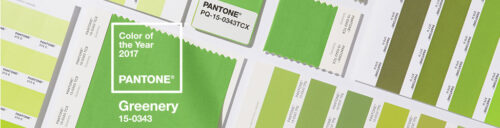 Pantone Color of the Year is Greenery